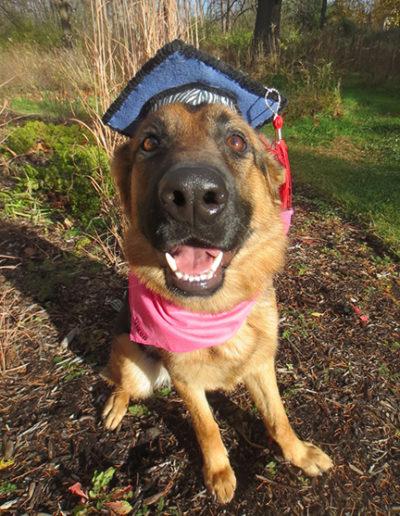 Dog-training-graduation-grad1-768x1024
